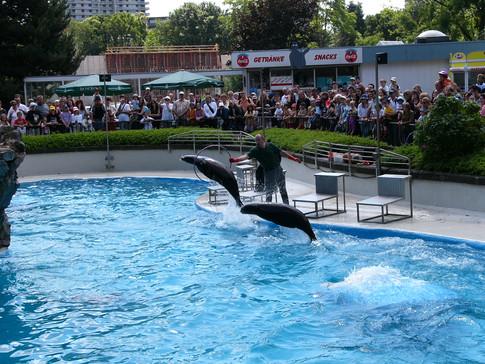 Karlsruher Zoo