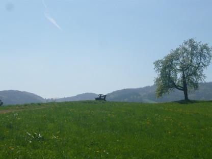 Traumhafter Aussichtspunkt am Jägerhof