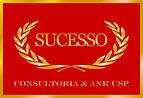 Logo_sucesso_consultoria.jpg