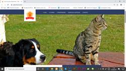 site_petschool