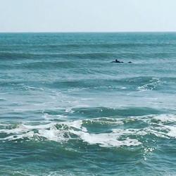 Little waves in Galveston yesterday