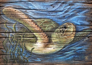 Sea Turtle on Grass
