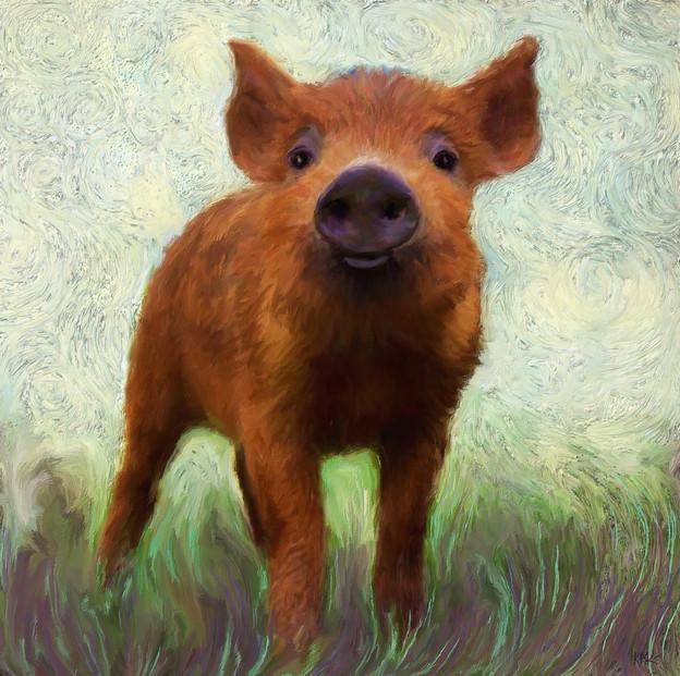 Thorton a Pig