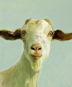 Goat to be Serious
