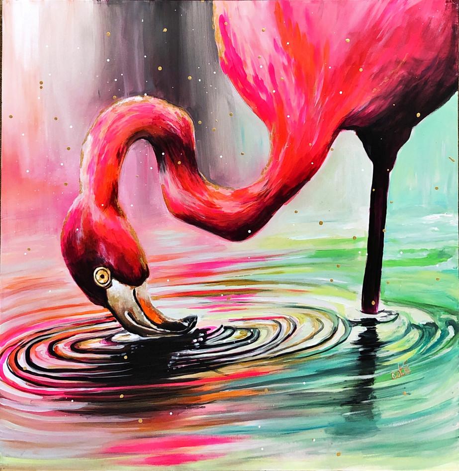 Fireflies and Flamingos