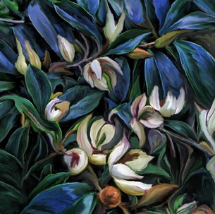 Magnolia Midnight