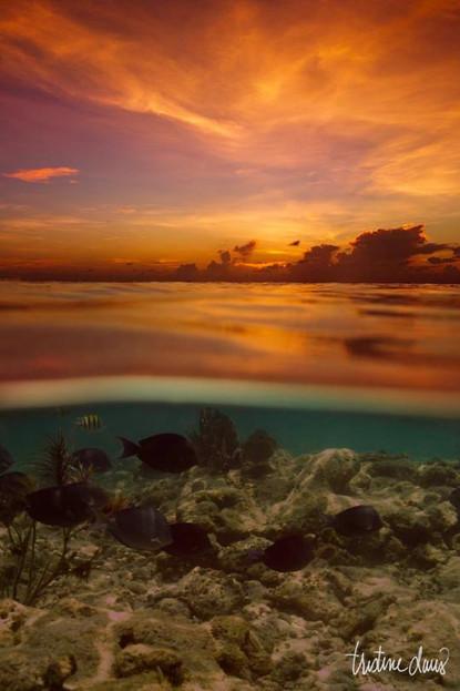 Beneath the Sunset
