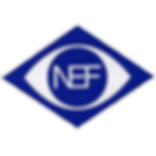 Logo Nef.png