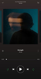Screenshot_20190310-144215_Spotify.jpg