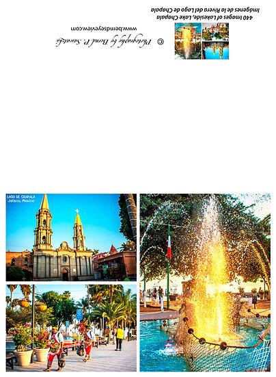Chapala Picture Composition / Composición de la imagen de Chapala 440