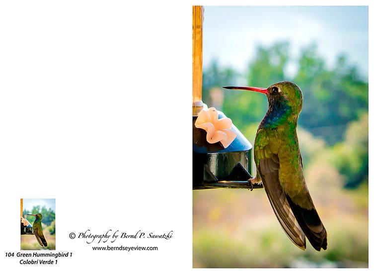 Hummingbird / Colibri 104
