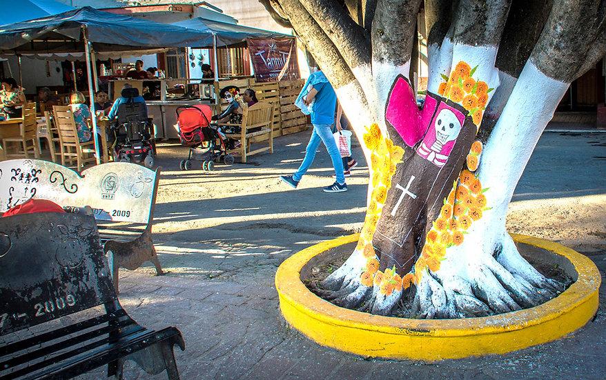 Ixtlahuacan at the Day of the Dead / Ixlahuacan en el Día de los Muertos D-204