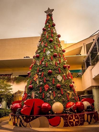 Christmas CCX206