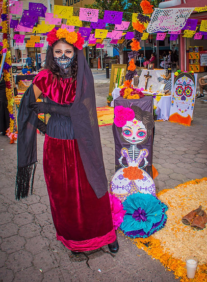 Day of the Dead Chapala / Día de Muertos Chapala CD241