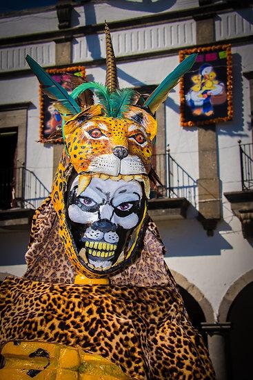 Day of the Dead Chapala / Día de Muertos Chapala CD267