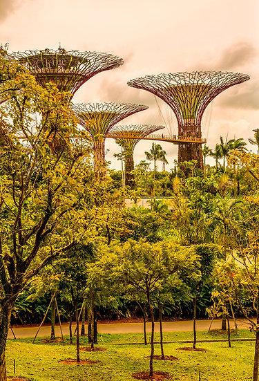 Singapore 11-094