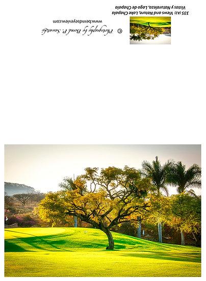 Vista del Lago Golf Course 335-A02