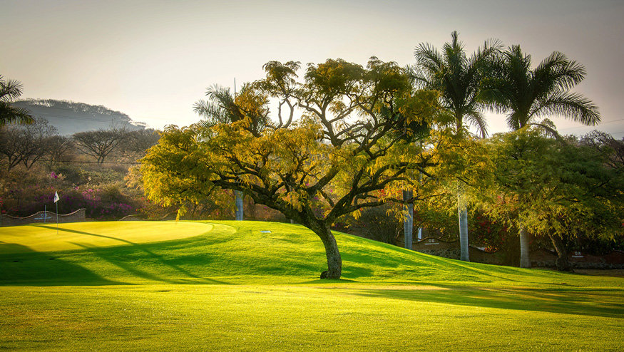 Vista del Lago Golf Course 335-A02