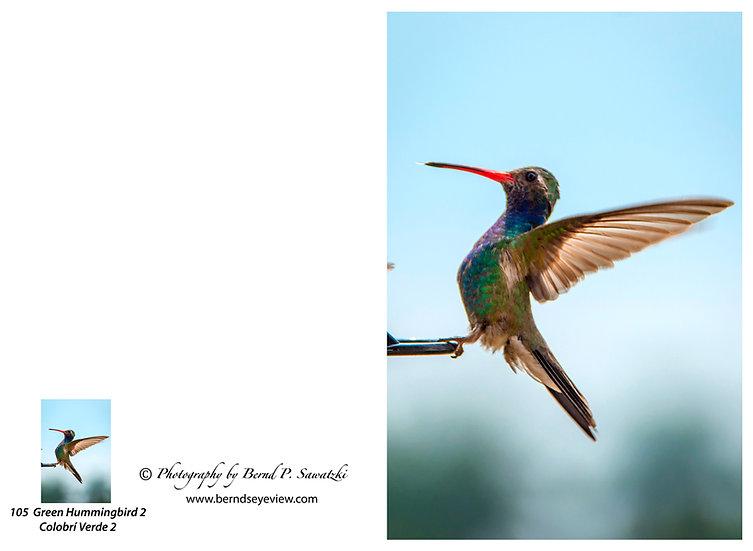Hummingbird / Colibri 105