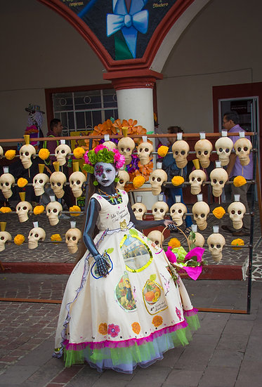 Beautiful Catrinas of Mexico CC263