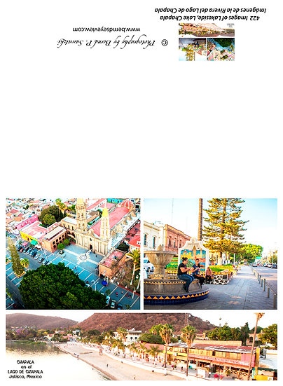 Chapala Picture Composition / Composición de la imagen de Chapala 422