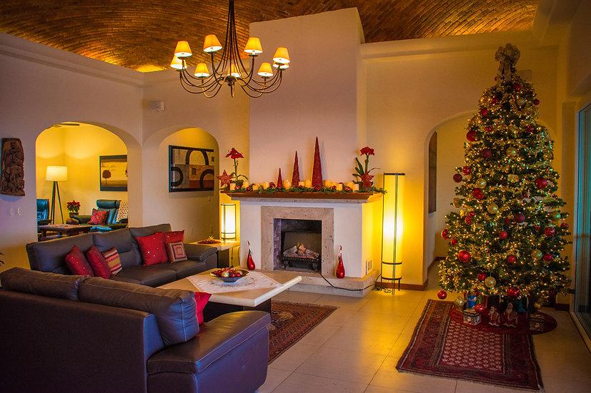 Christmas CCX202