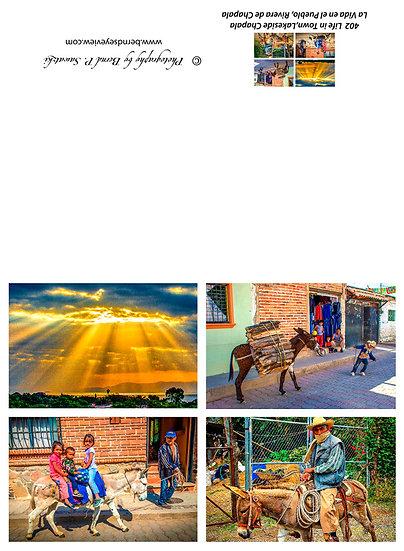 Mexican Life / Vida mexicana 402