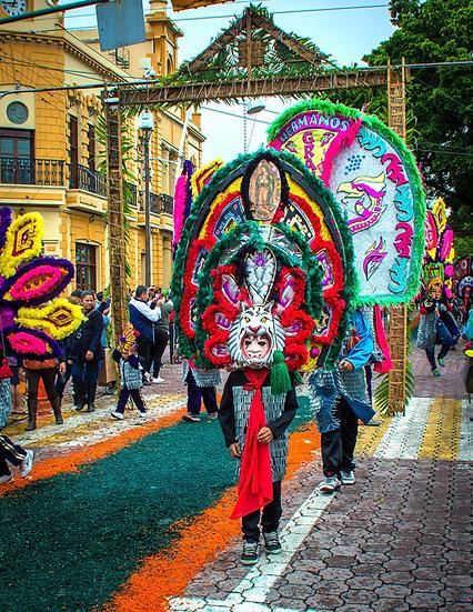 Virgin of Zapopan Festival / Festival de la Virgen de Zapopan 821