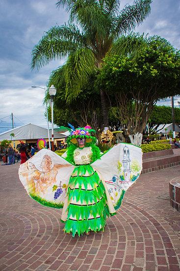 Beautiful Catrinas of Mexico CC247