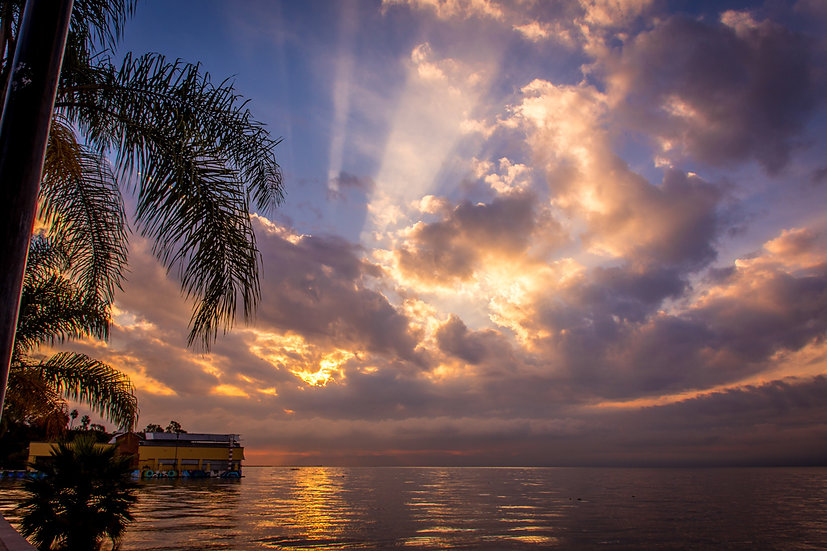 Lake Chapala 311B