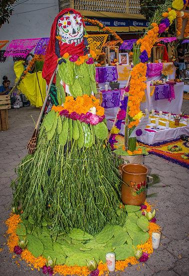 Day of the Dead Chapala / Día de Muertos Chapala CD244
