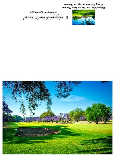 Vista del Lago Golf Course 336-A06