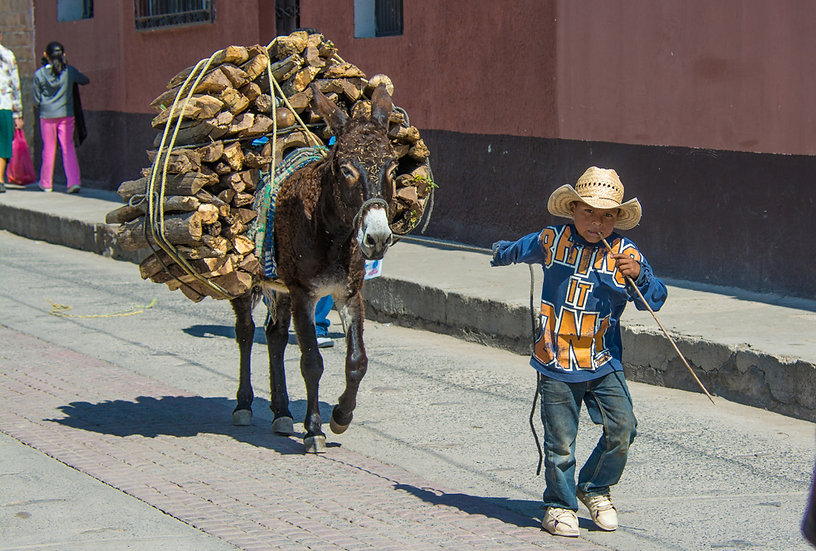 People of Mexico 683
