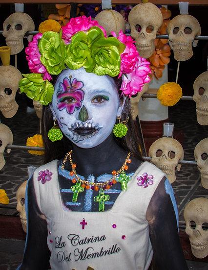 Beautiful Catrinas of Mexico CC264