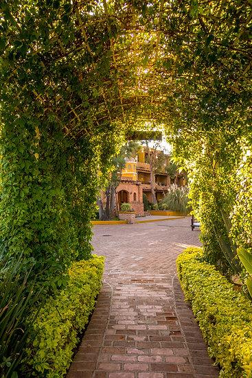 Quinta San Carlos 10-065
