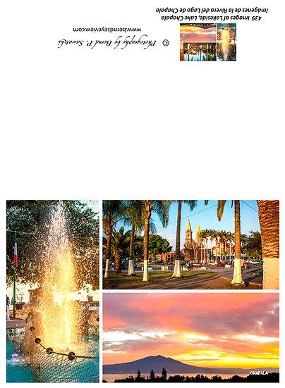 Chapala Picture Composition / Composición de la imagen de Chapala 439