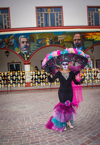 Beautiful Catrinas of Mexico CC251