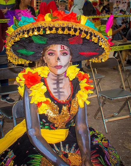 Beautiful Catrinas of Mexico CC290