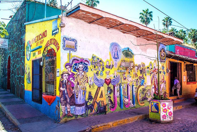 House Pedro Loco / Casa Pedro Loco 707