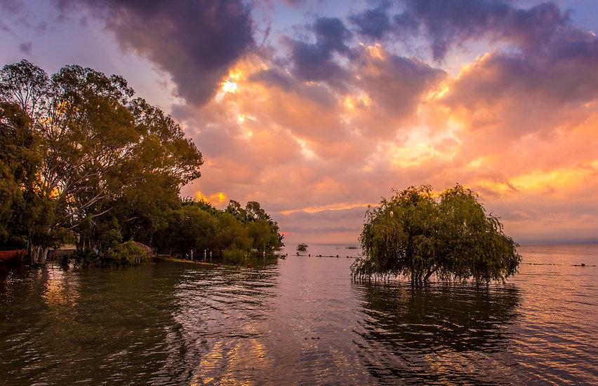 Lake Chapala 358B