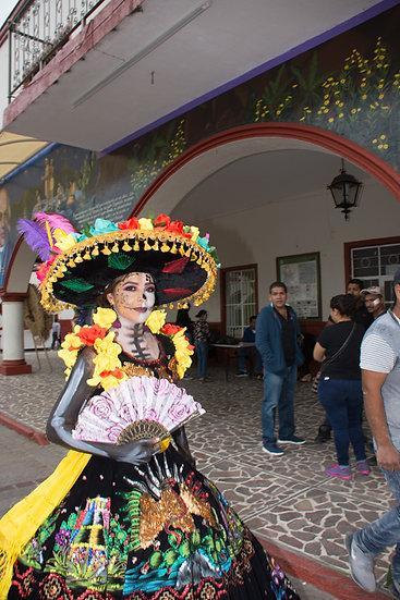Beautiful Catrinas of Mexico CC273