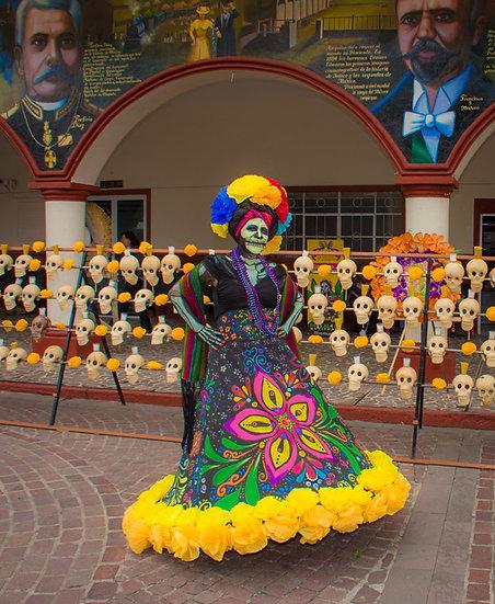 Beautiful Catrinas of Mexico CC231