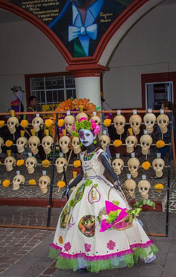 Beautiful Catrinas of Mexico CC262