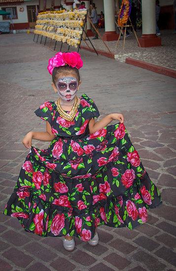 Beautiful Catrinas of Mexico CC270