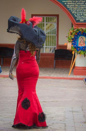 Beautiful Catrinas of Mexico CC242