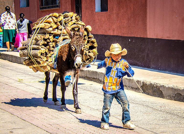 Boy with Donkey / Niño con burro, San Juan Cosala. Jalisco 653