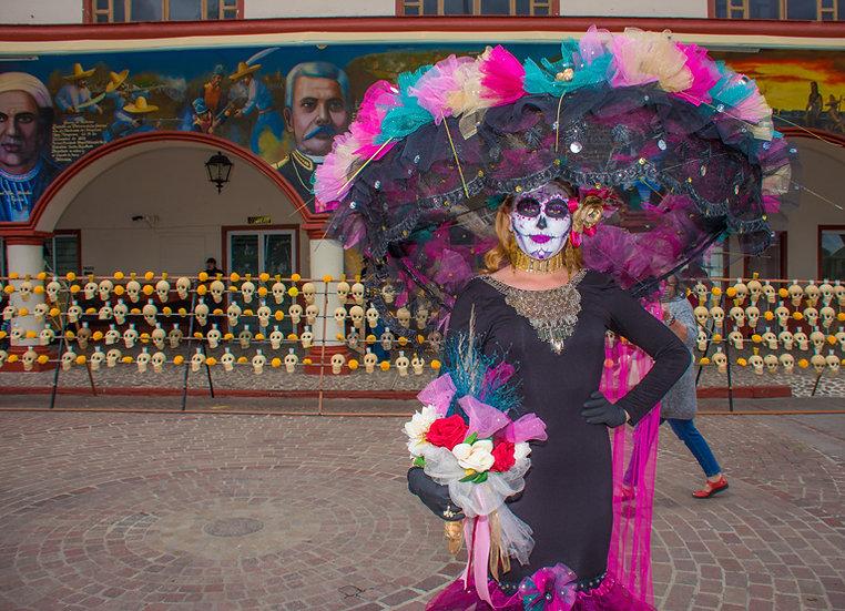 Beautiful Catrinas of Mexico CC253