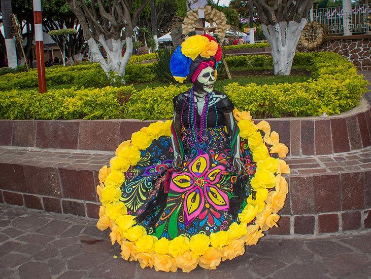 Beautiful Catrinas of Mexico CC236