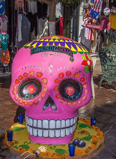 Day of the Dead Chapala / Día de Muertos Chapala CD265