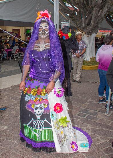 Beautiful Catrinas of Mexico CC281